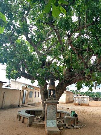 Ouidah, Bénin: Tree of return