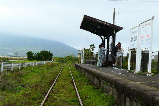JR Southernmost Nishioyama Station: 静かでのどかな駅で無人駅であるため、ホームに無料ではいることができます。
