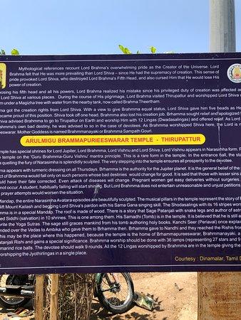 Brahmapureeswarar Temple: About the temple