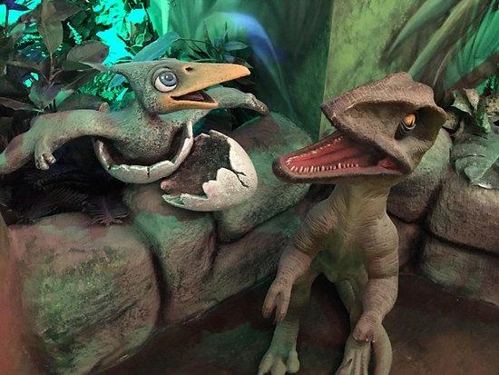 T-Rex Restaurant: Bayby dino