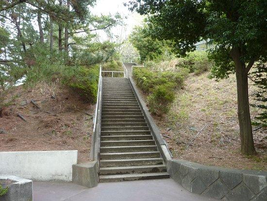 公園内の階段(90段近く続く)