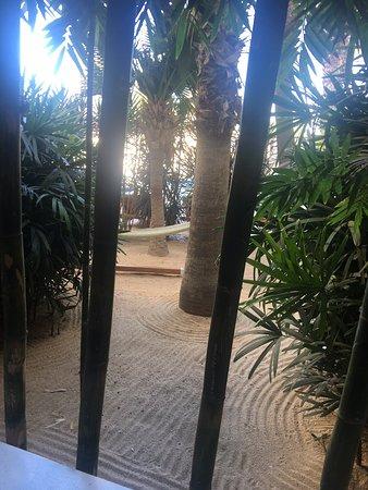 바히아 호텔 & 비치 클럽 사진