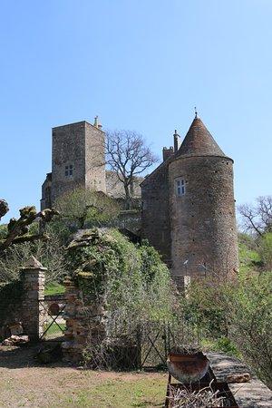 Château de Brancion: Vue extérieure