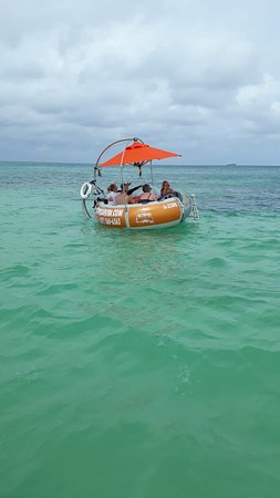 Octopus Aruba - Always perfect weather here in Aruba but our guests make our days worth our while! We want our guests to feel part of the Octopus family! Our Donut boats are the life of the party, but we make sure that everyone that sails with us privately or non-privately has an amazing time :)