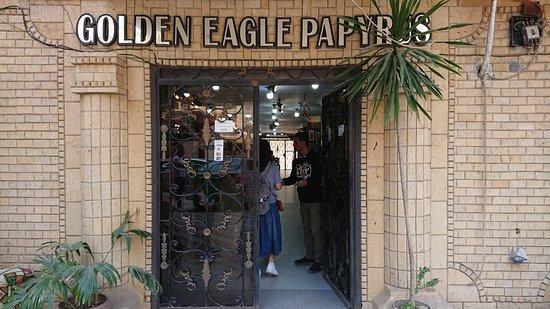 Golden Eagle Papyrus