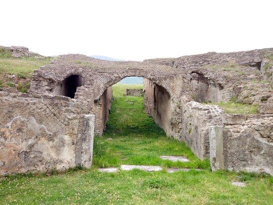 Avella, Italy: Interno anfiteatro romano