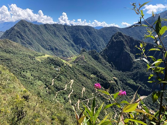 Classic Salkantay Trek 4-Day: Day 5: View at Machu Picchu from direction of sungate