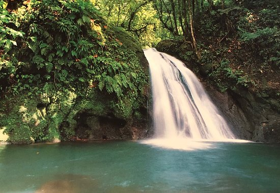 Clarisma Tour: Exploring Grande-Terre and Basse Terre Guadeloupe French Antilles