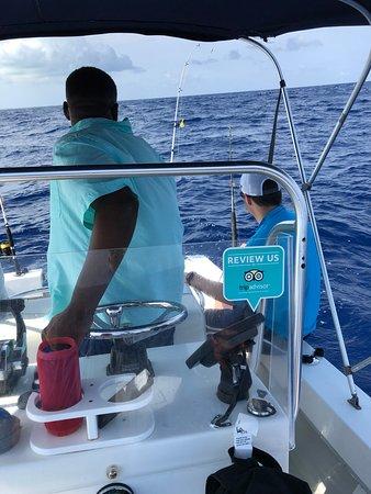 Bilde fra Captain Jimmy Tours