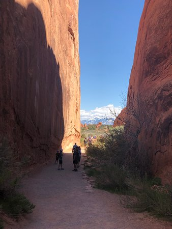 Landscape Arch: Nice shady sections of the hike