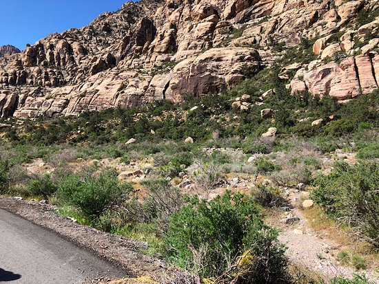 Scooter Tours of Red Rock Canyon: Another picture from stop 3