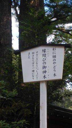 En Musubi no Ki