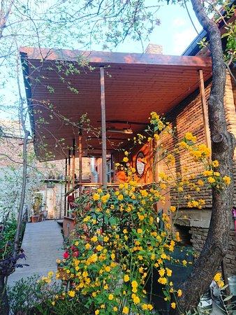 Shavi Lomi: Outdoor