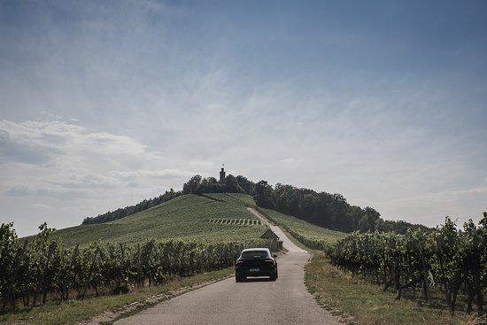 Leingarten, เยอรมนี: Der Berg