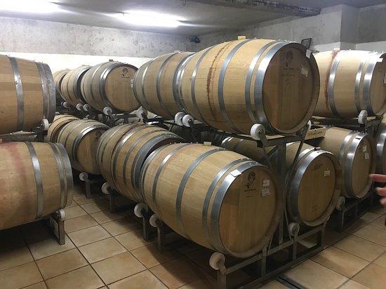 Valpolicella Tour: The land of Amarone: Oak barrels