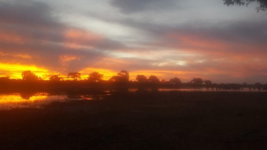Jumbo Junction Camp: Elephants in the distance at sunset on 20 April 2019 not far from Jumbo Junction camp.