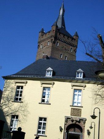 Die Schwanenburg.