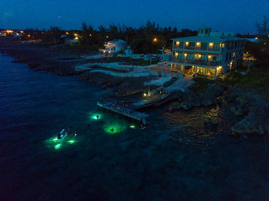 Night divers in the water off Lighthouse Point.