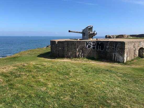 Trow Point Disappearing Gun