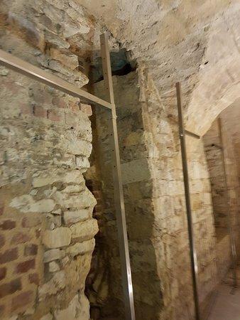 12th century cellar