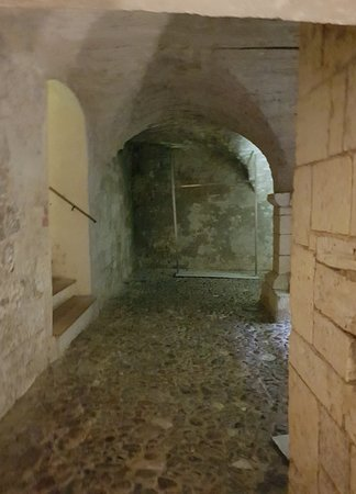 The 12th century cellar