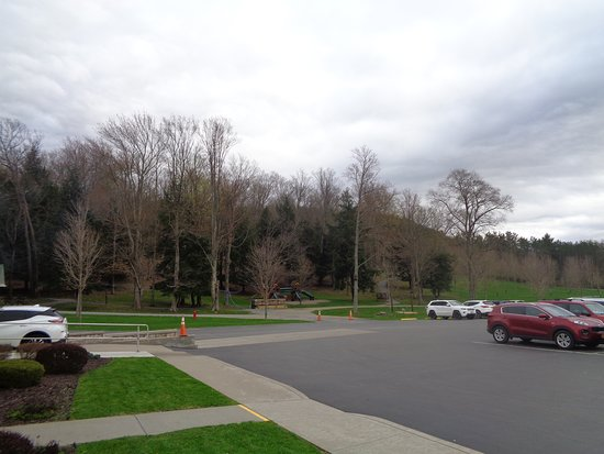Portville, NY: Ample parking. children's play area with two cages of quail