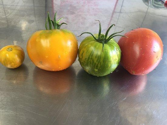 La Table D'Albizzi: Tomate de notre jardin