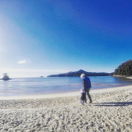 Abel Tasman Vista Cruise: The beach infront of Torrent Bay Lodge