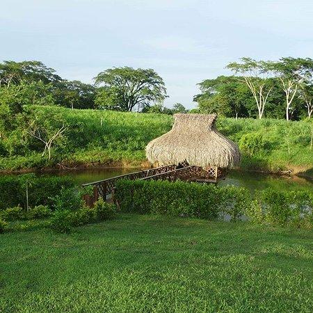Департамент Боливар, Колумбия: Este es el kiosko de la relajación donde podrás disfrutar de diversas actividades entre ellas la pesca artesanal y una gran siesta en una hamaca avistando la fauna silvestre.