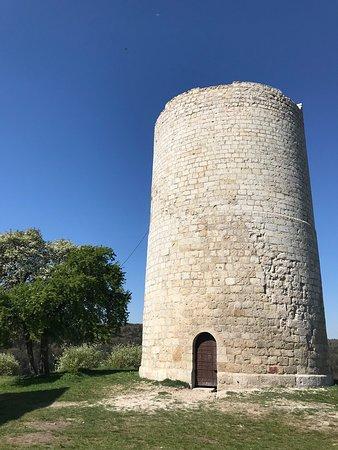 Burgruine Kallmünz