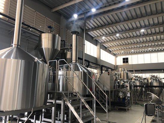 Cervejaria Startup Brewing