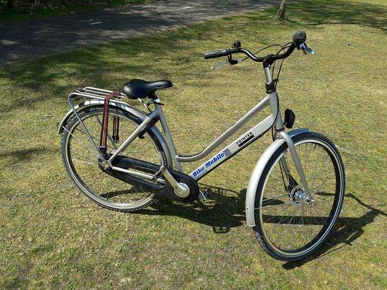 Bike Mobile Lisse / De Nachtegaal