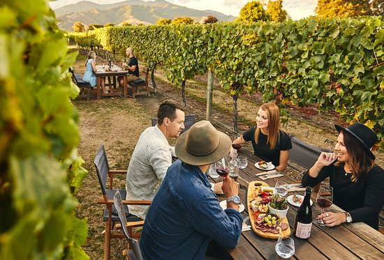 Blenheim, Selandia Baru: Unique vineyard setting - dining in the vines at its best!