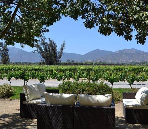 Turismo de vino Chile