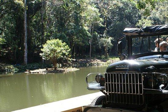 Excursión en jeep por la selva...