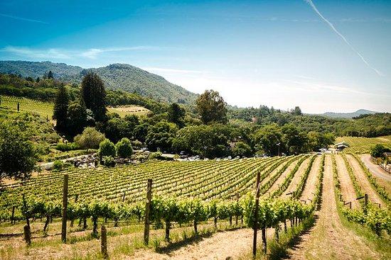 Visita turística a Napa y Sonoma Wine...