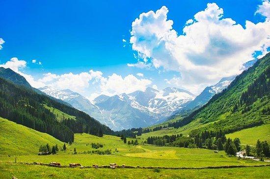 Excursión a Berchtesgaden y el Nido del...