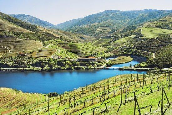 正宗的杜罗葡萄酒之旅包括午餐和可选的河上游船