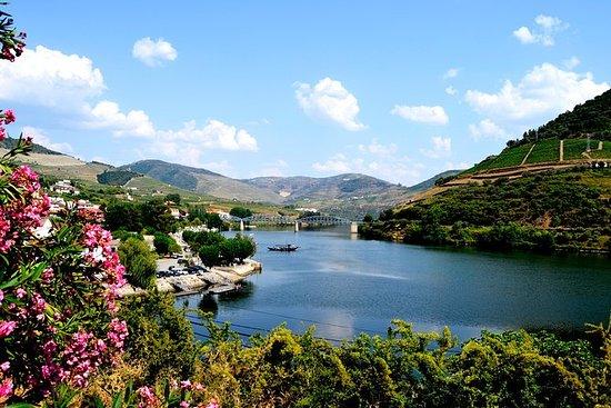 杜罗河谷小团体旅游,品酒,葡萄牙午餐和可选的河上游船