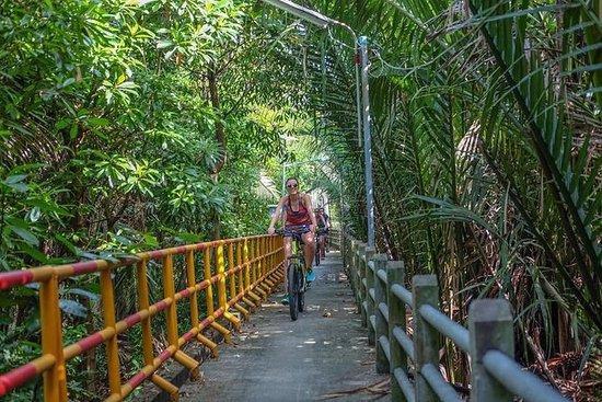 Tour en bicicleta por la selva de...