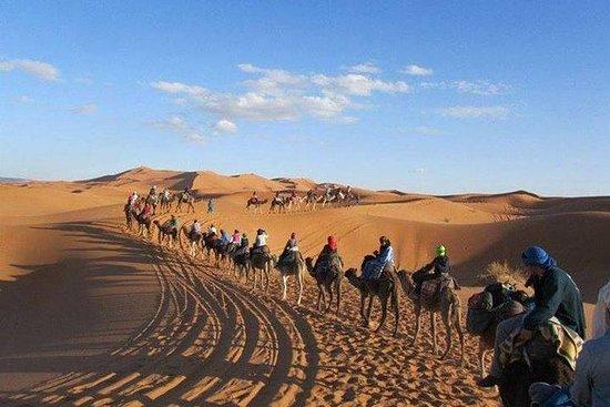 Excursión de 3 días por el desierto...