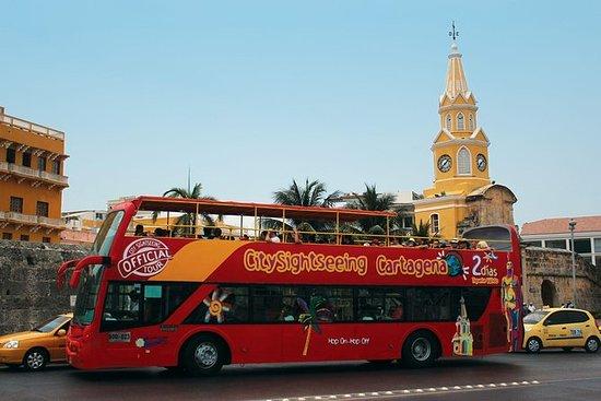 Giro turistico in autobus di