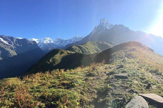 Mardi Himal Trek - 11 Days