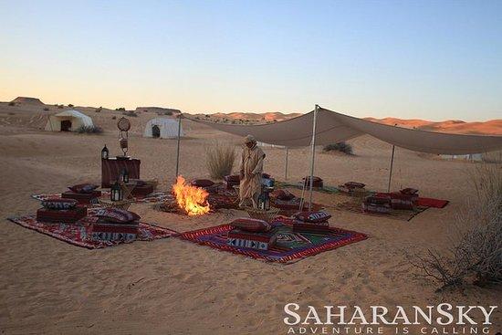 Durante la noche Túnez Safari por el...