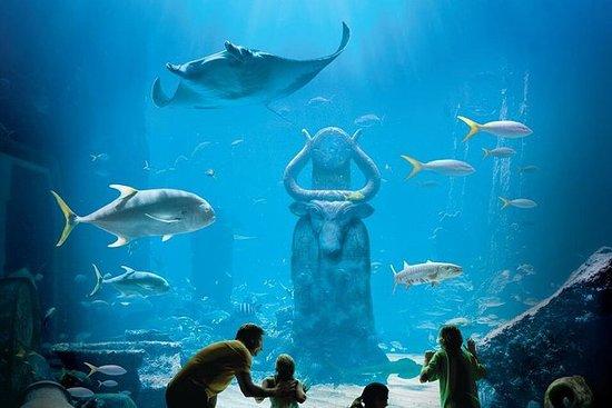 Découvrez Atlantis