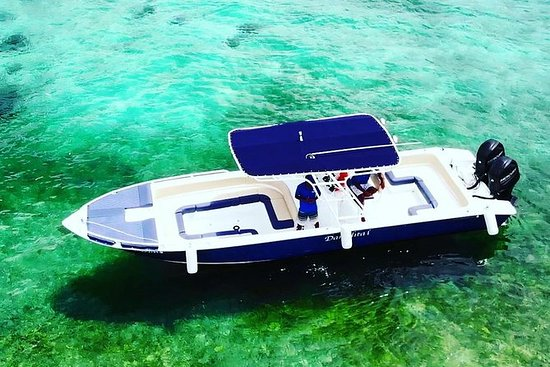 Excursión en barco privado: escapada...