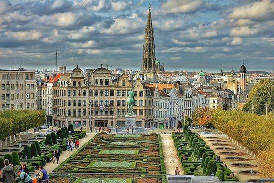 从阿姆斯特丹到布鲁塞尔的私人全日观光游照片