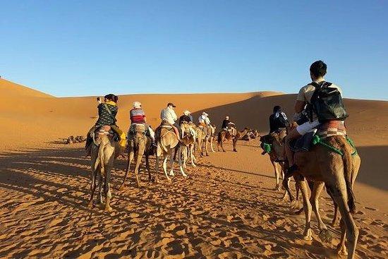 Excursion de 2 jours dans le désert...