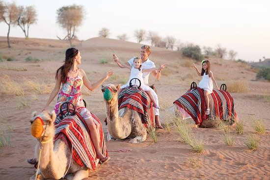 Ras Al Khaima Al Wadi Desert 4x4...
