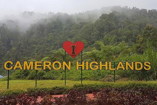 吉隆坡旅游!金马仑高原(一日游)